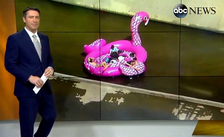 Breaking News Bouée géante flamant rose rivière los angeles
